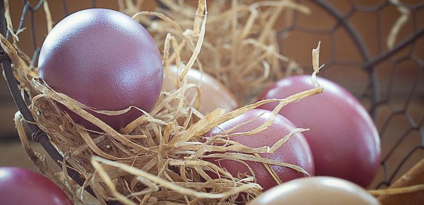 La Pasqua in Maremma tra sacro, profano e mangereccio