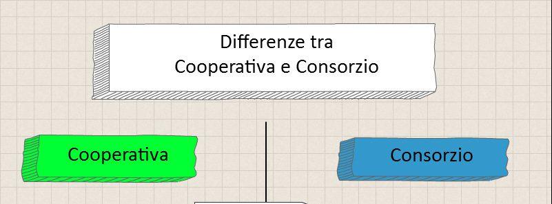Cooperativa o Consorzio? Un'infografica per spiegare le differenze