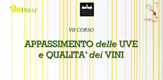 VII Corso di Formazione: Appassimento delle uve e qualità dei vini